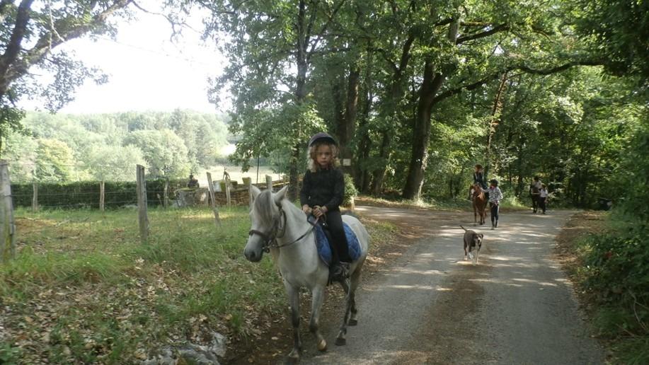 Enfant sur un cheval lors d'un camp d'équitation