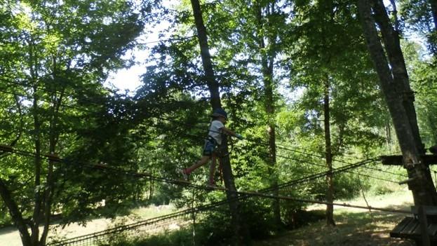 Enfant dans les arbres lors d'un parcours d'accrobranche