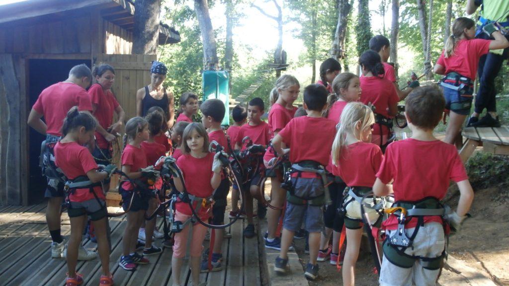 Préparation des enfants à l'accrobranche lors du camp nature